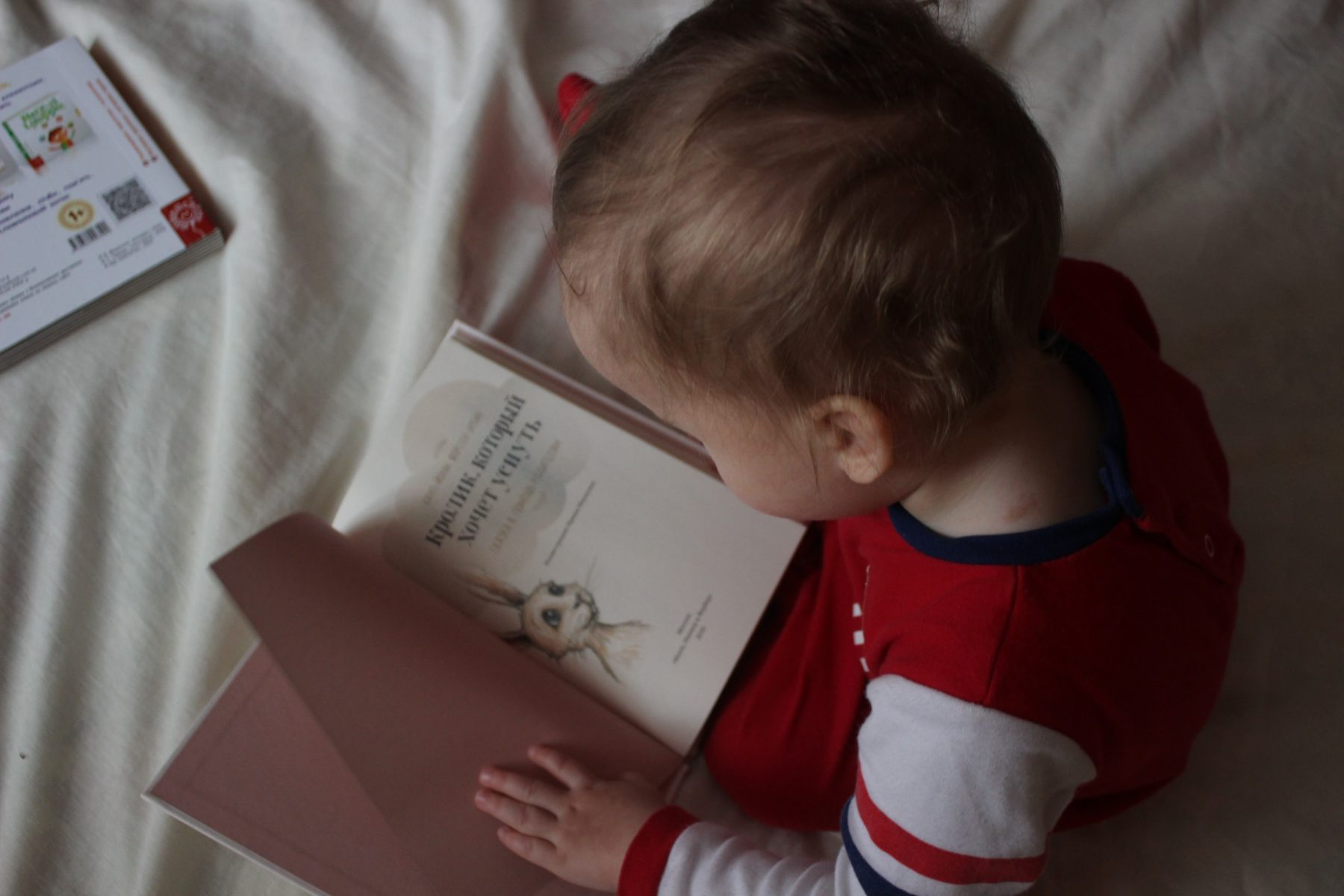 Child Reading - How to Start Teaching Your Toddler to Read